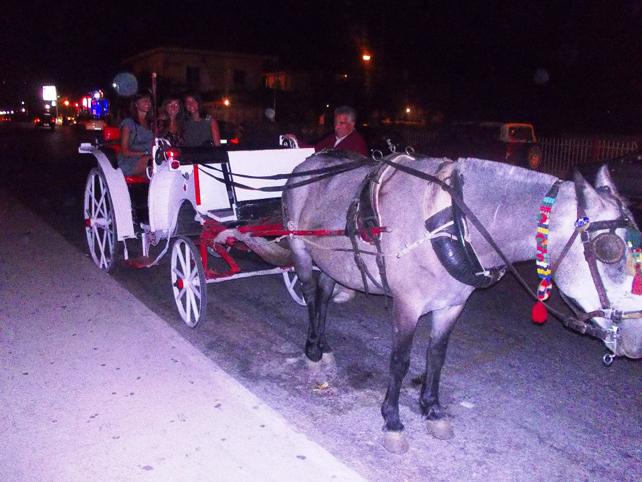 laganas-carrozza-cavalli
