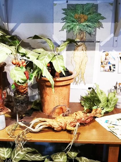 harry-potter-studios-erbologia