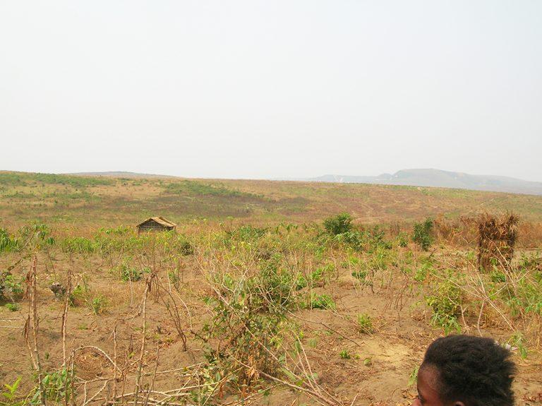 Paesaggio Africa