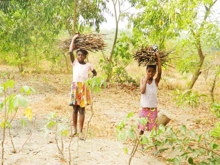 Congo donne