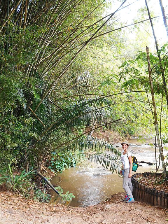 Congo fiume Lola Ya Bonobo