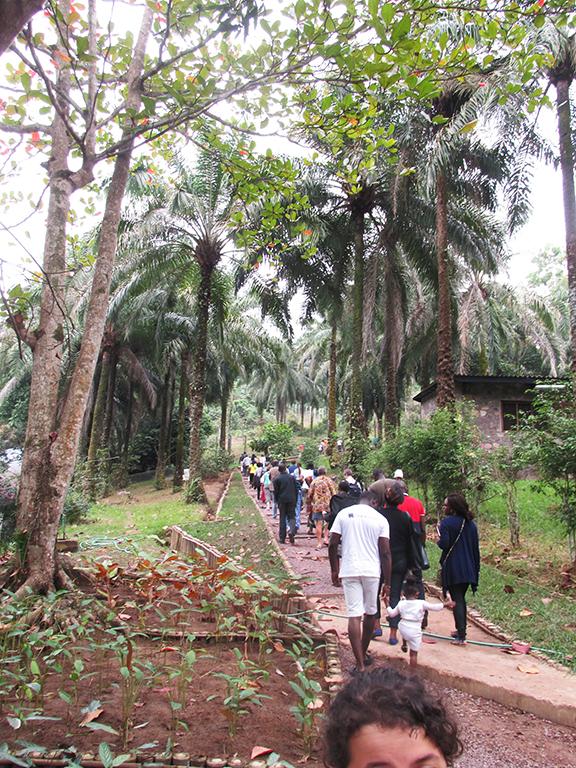 Lola Ya Bonobo Congo